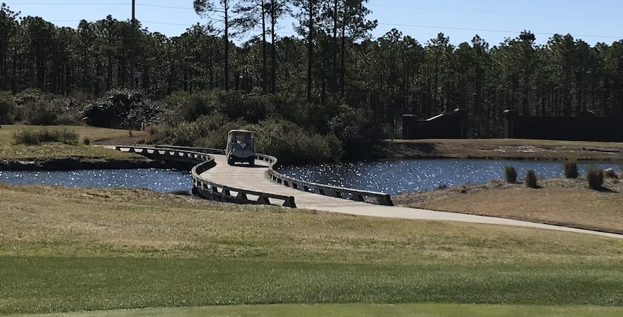 Big Cats Golf Packages