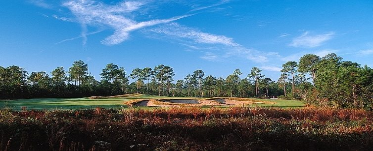 Parkland Golf Myrtle Reviews