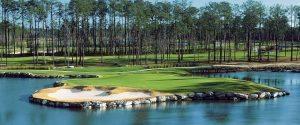 Big Cats Golf Promo Free Round