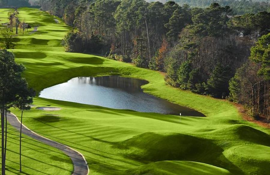 Wild Wing Golf Packages