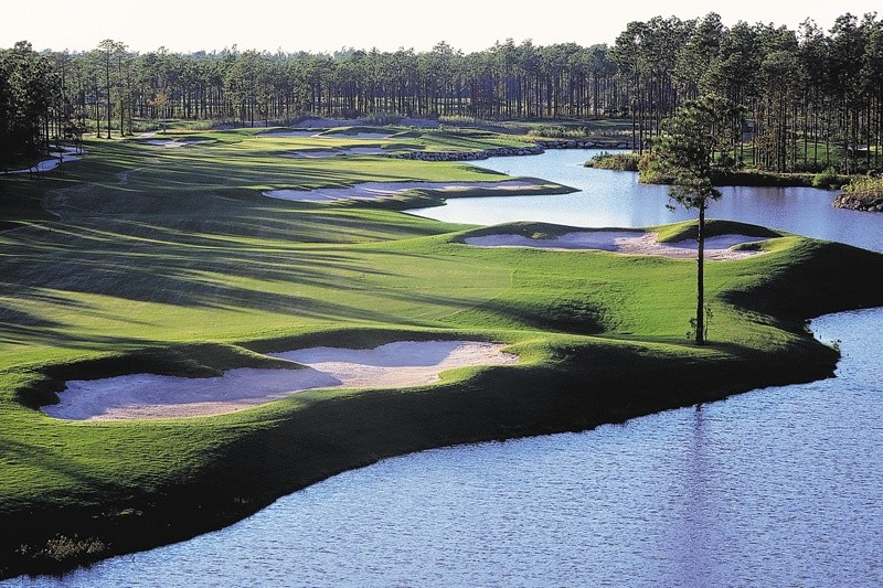 Tigers Eye Golf Reviews
