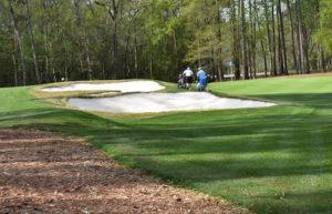 TPC Golf Course Myrtle Beach Reviews