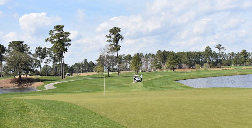 International World Tour Golf Reviews