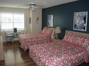 Best North Myrtle Stay & Plays