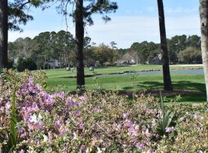 Myrtle Golf Course Map